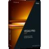 【最新版】プロ用映像制作ソフト VEGAS Pro 15 Edit 税込5378円 VEGAS Pro 15 Suite 税込13824円 送料不要