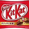 ネスレ日本 キットカット ミニ 14枚×12袋が激安特価!